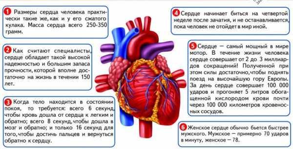 картинки сердце занято и закрыто займы на карту срочно без проверки без отказа онлайн без процентов в чите